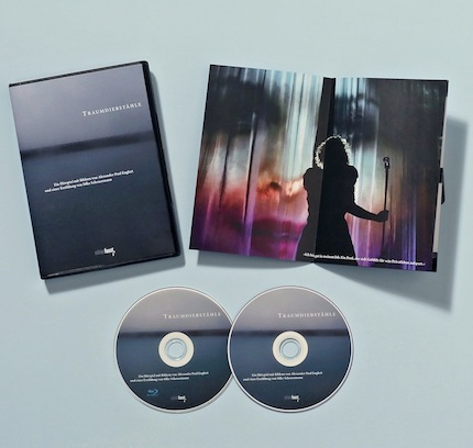 DVD Traumdiebstähle